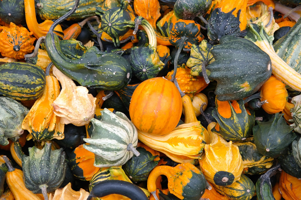Important Things To Know About Pumpkin - A to Z Fruit & Veg
